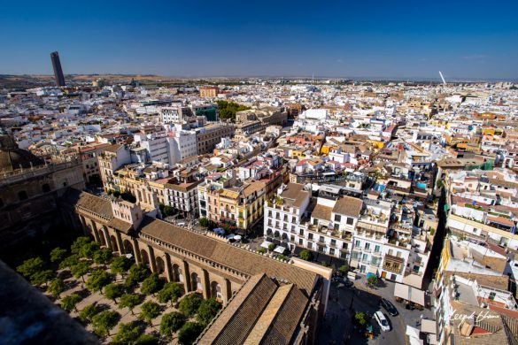 why-we-love-Seville-Spain-view
