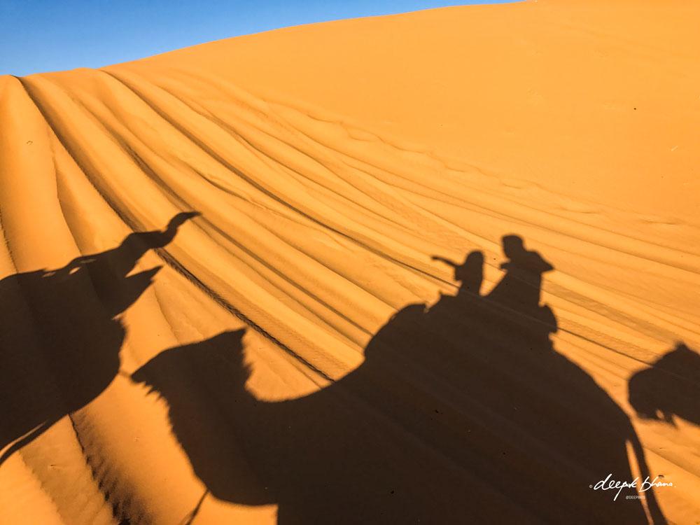 Todayfarer-family-Merzouga-Sahara-Morocco-riding-camels-silhouettes-sand-dunes